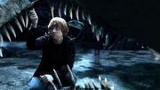 Harry potter and the deathly hallows part 2 the chamber of secrets