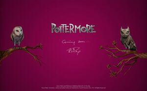 Pottermorejune17