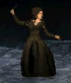 Screenshot 450 (Nintendo DS).png