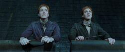 HPDH Fred and George