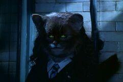 Hermione polyjuice