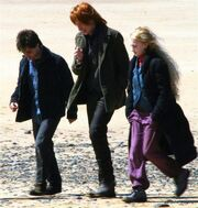 Bill walking with Harry and Luna at Shell Cottage