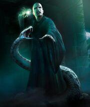 Voldemort-Nagini