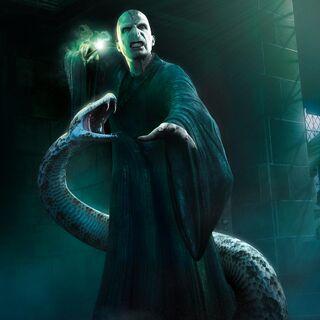 Темный Лорд и Нагайна(Игра ГП5)