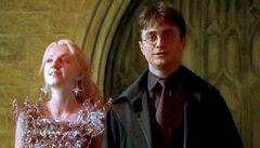Hbp-luna harry