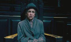 Mrs Figg Trial 1
