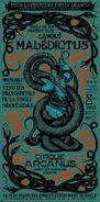 Replica Maledictus Circus Poster