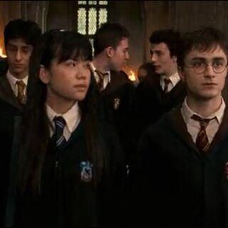 Гарри разговаривает с Чжоу