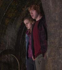 Ronyhermione