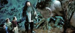 Hagrid introduces the trio to Grawp