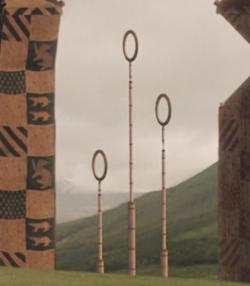 Quidditch goal post's