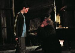 Harrry saves Pettigrew