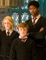 Luna, nigel and dean