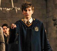 Newt hogwarts
