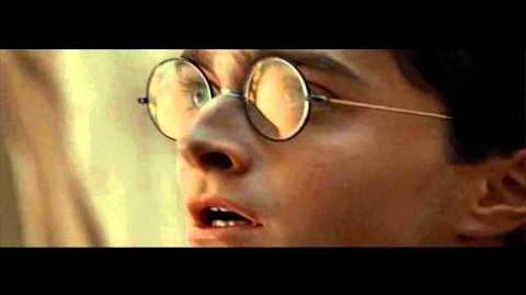 Harry Potter & the Deathly Hallows Part 1 Voldemort finds Gregorovitch