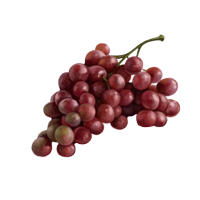 Bunch-of-grapes-lrg