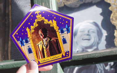 Gilderoy Lockhart Chocolate Frog Card - WWHP