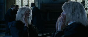 HP i CO bliźniaki z brodą