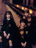 15. Hermione, Harry, Ron (Harry Potter 2)