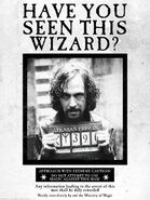 MinaLima Store - Have You Seen This Wizard - Poster