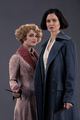 Tina and Queenie.png