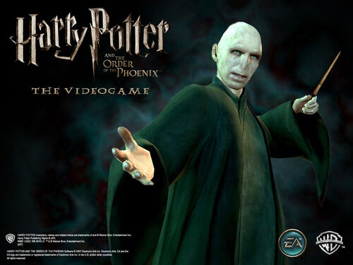 Voldemort profile