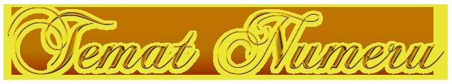 Cool Text - Temat Numeru 222535225339983 (1)