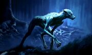 RemusLupin WB F3 Concept of Lupin In Forest As A Werewolf Illustration