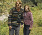 Ron-herme