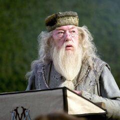 Альбус Дамблдор произносит речь перед вступлением чемпионов в лабиринт