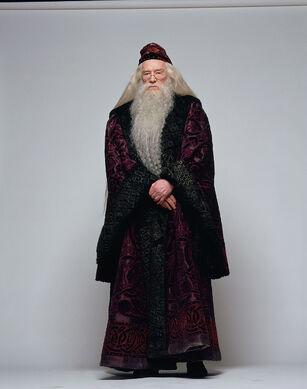 理查德·哈里斯饰演的阿不思·邓布利多。