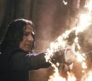 Severus Snape's wand