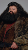 Rúbeo Hagrid