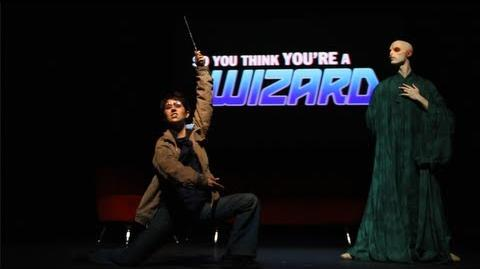 Harry Potter - So You Think You're a Wizard by The Hillywood Show®