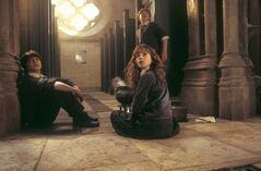 Harry ron i hermiona