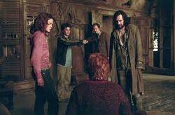 O Trio, Sirius, Lupin e Rabicho