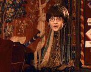Harry mantello dell'invisibilità