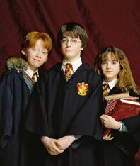 Golden-trio-harry-potter-13747243-299-400