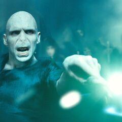 Волан-де-Морт противостоит Гарри Поттеру