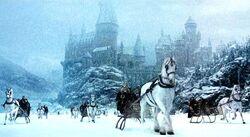 Зимний Хогвартс-Рождество 1992-(ГПиТК)