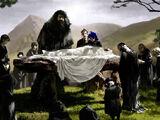 Pogrzeb Albusa Dumbledore'a