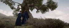 Newton i Leta na wyspie nieśmiałków