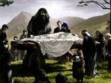 Funérailles d'Albus Dumbledore
