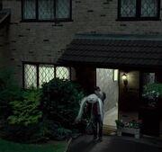 Harry und Hedwig fliegen lassen