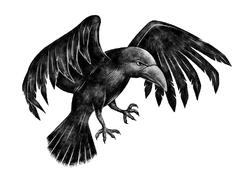 Lestrange Family Raven