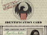 Porpentina Goldstein's MACUSA Identification Card