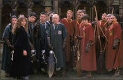Team de Quidditch HP2