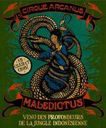 Circus Arcanus Show Banner - Maledictus