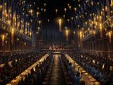 Festa memorial para Cedrico Diggory