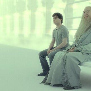 Гарри разговаривает с Дамблдором